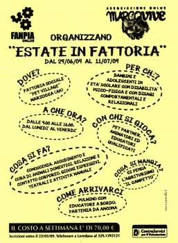 2009 – Estate in Fattoria