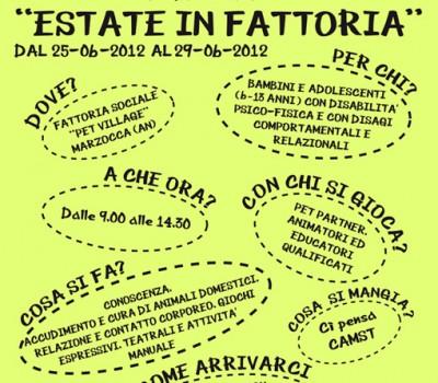 2012 – Estate in Fattoria